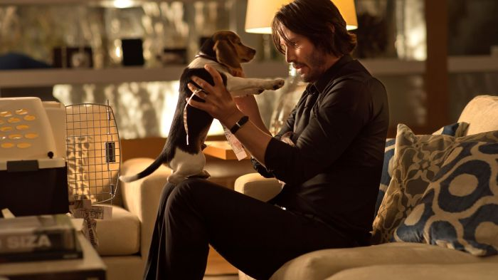 John Wick_Bottom